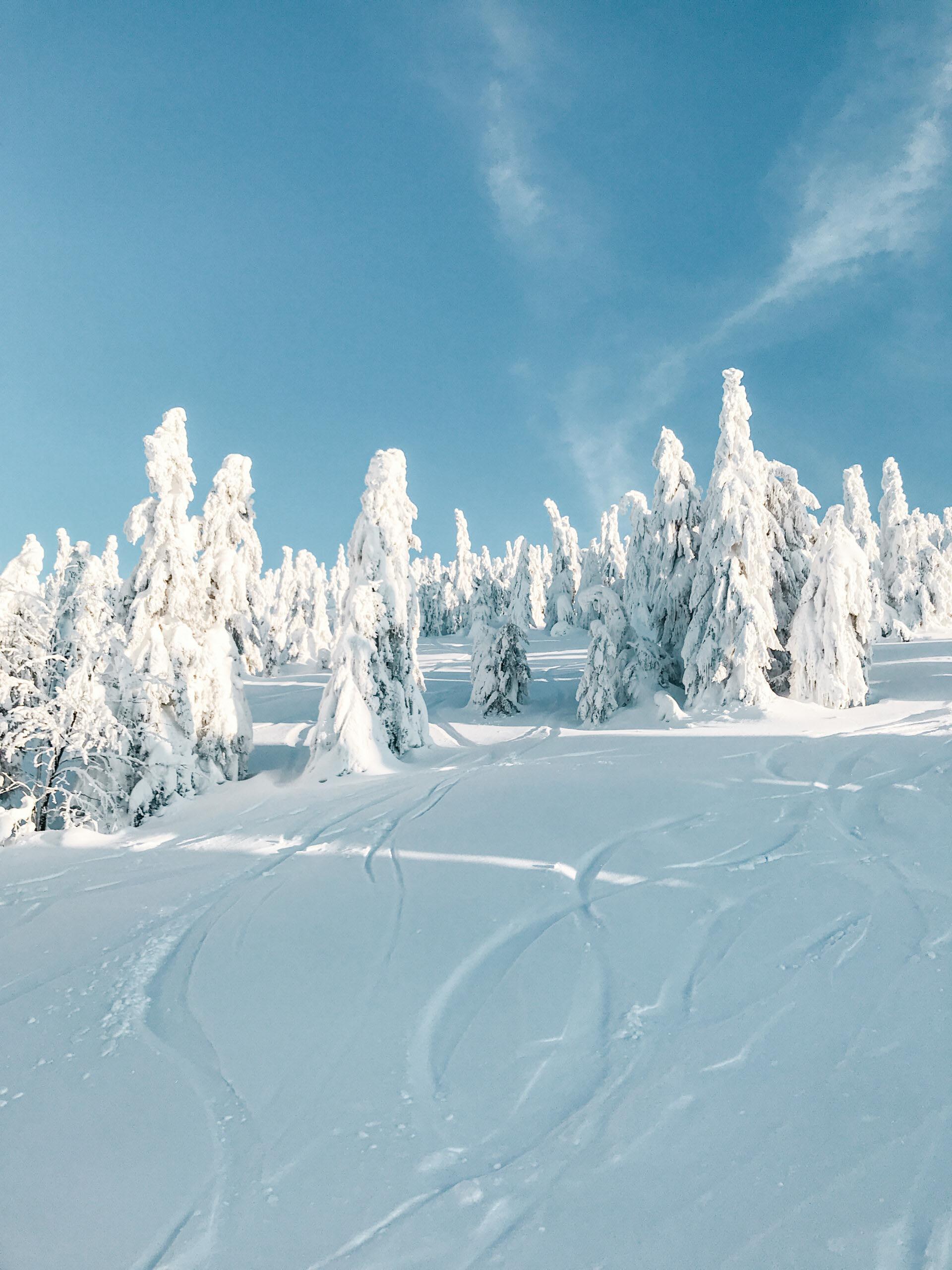 Krkonoše, zimní Rokytnice nad Jizerou - JIráci na cestách