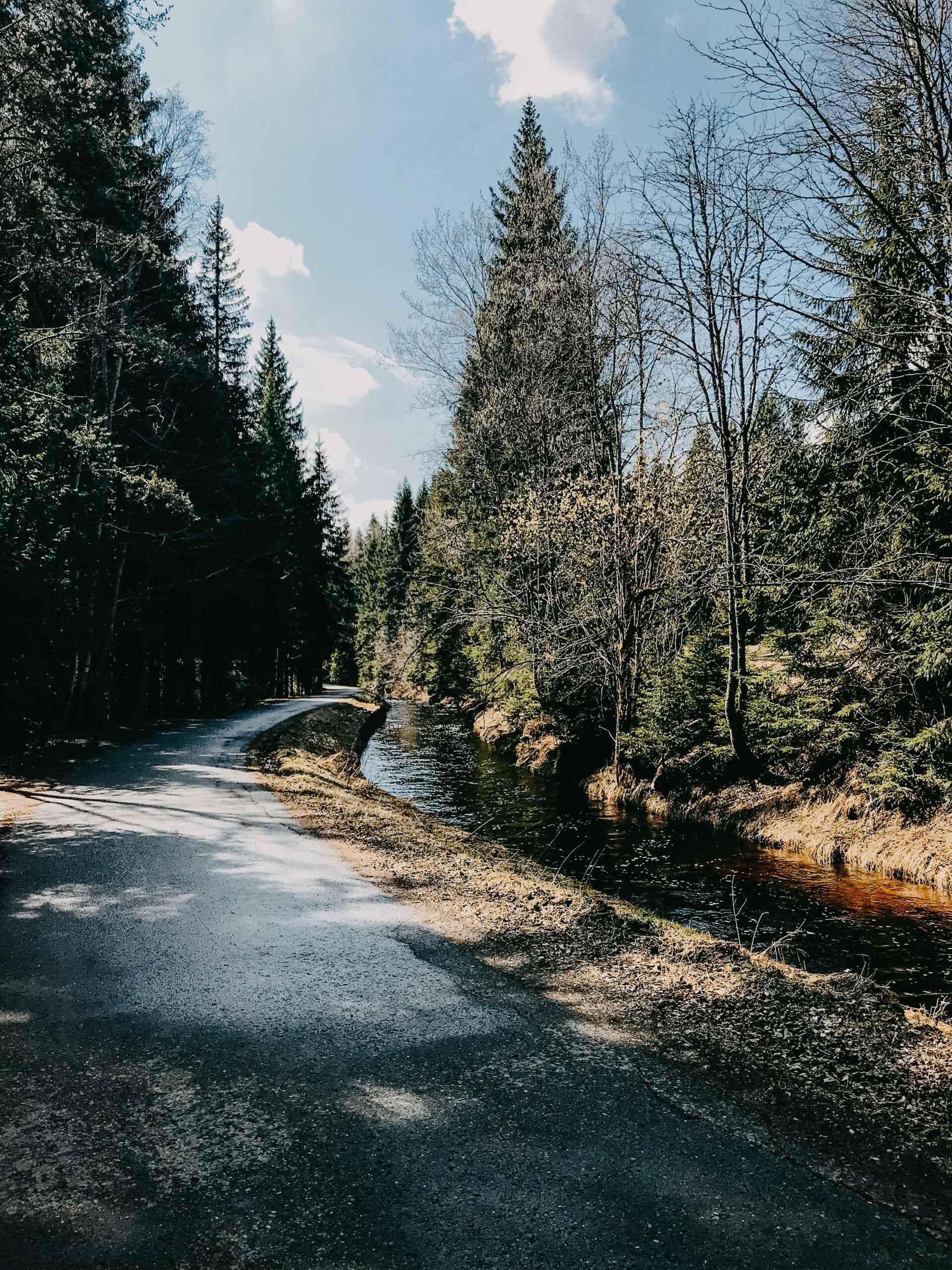 naučná stezka vydrýsek - šumava - Jiráci na cestách