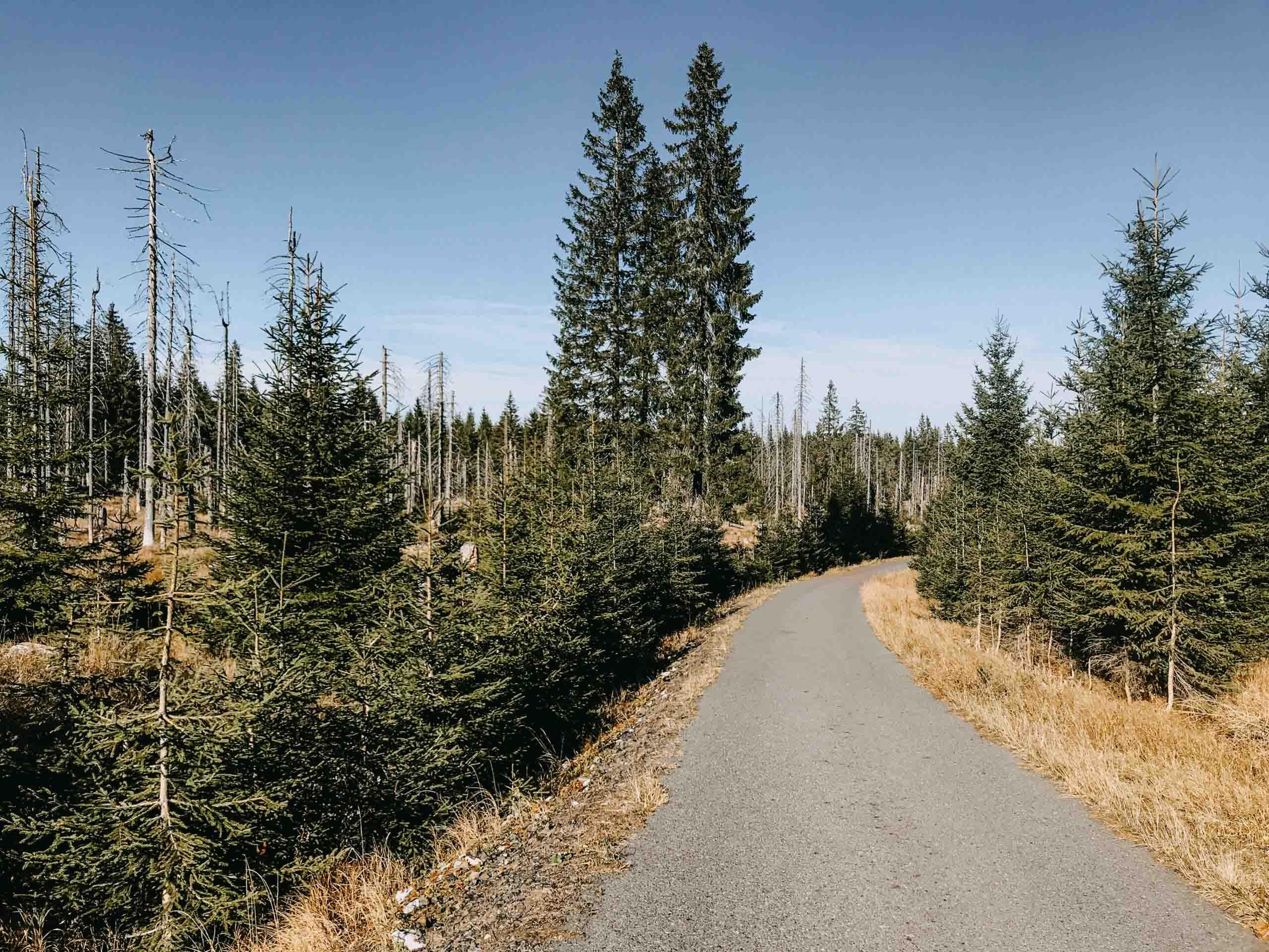 březník šumava