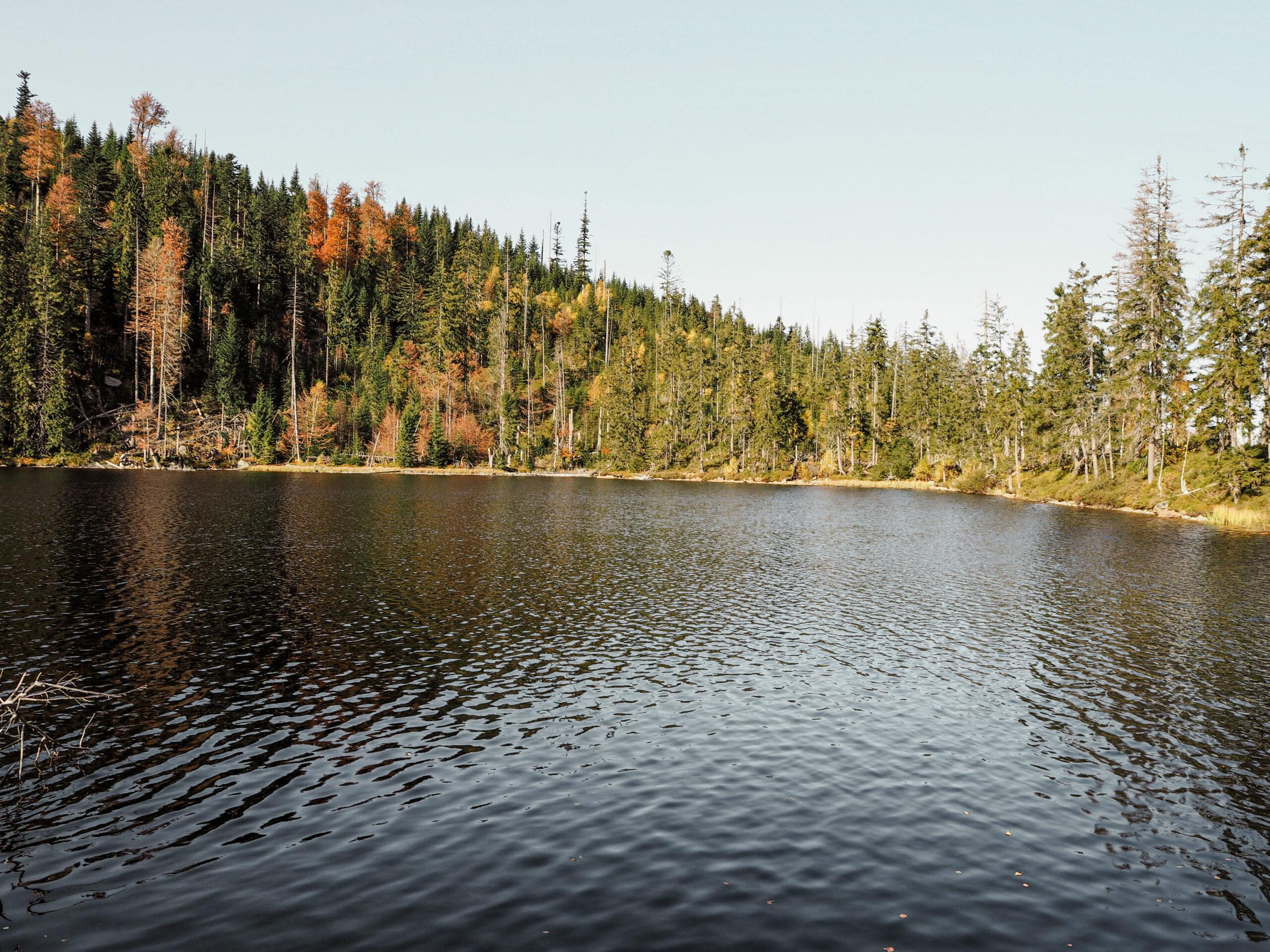 Poledník a Prášilské jezero - Šumava - Jiráci na cestách